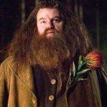 ハリーポッターのハグリッドの俳優は誰?身長は?