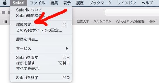キャッシュ削除:サファリ環境設定画像